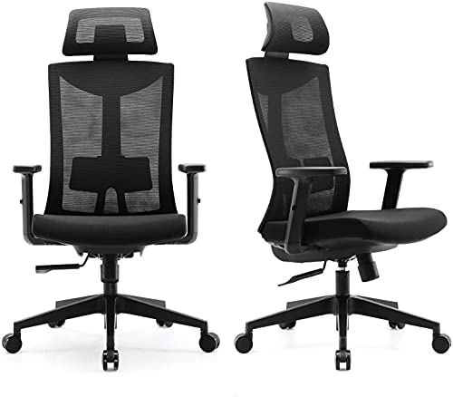 SIHOO Ergonomic Office Chair with Adjustable Lumbar Support and Armrests,Breathable Mesh Back and Padded Seat Desk Chair, Computer Chair for Work (Black)