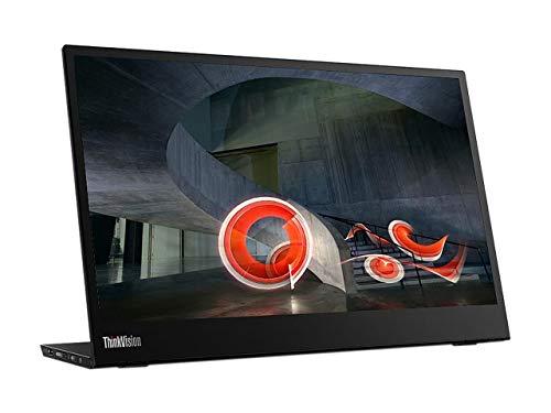 Best Overall: Lenovo ThinkVision M14