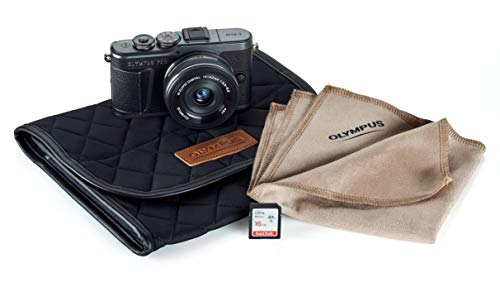 Best for Bloggers and Vloggers: Olympus PEN EPL-10