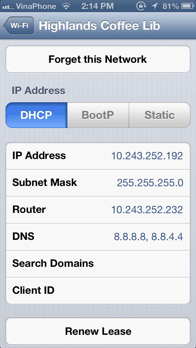 Changing DNS server settings on iphone screenshot
