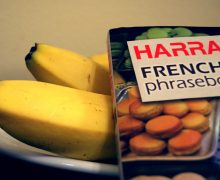 French Phrasebook and Fruit