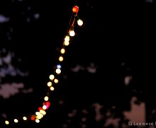 Lightbulbs-in-darkness.jpg