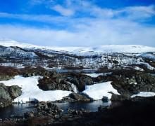 Snow in Norway