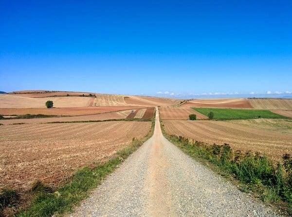 Camino - empty road