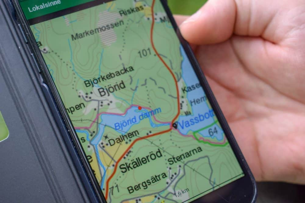 Forest trail on GPS