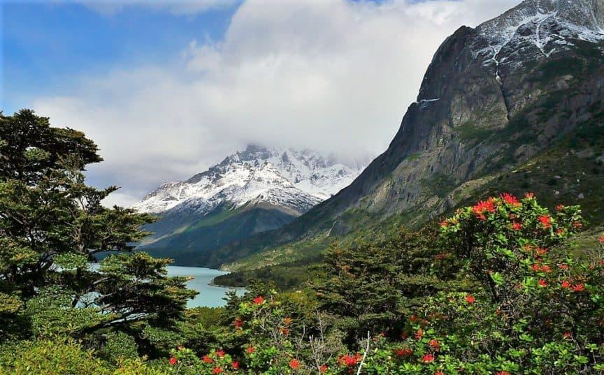Patagonia view