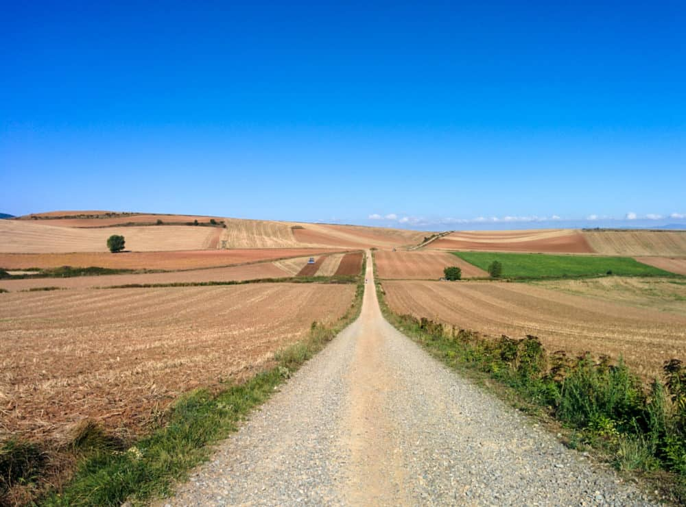 Camino empty road