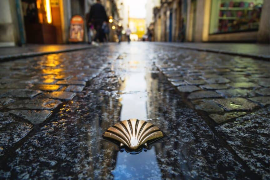 Camino shell on the road